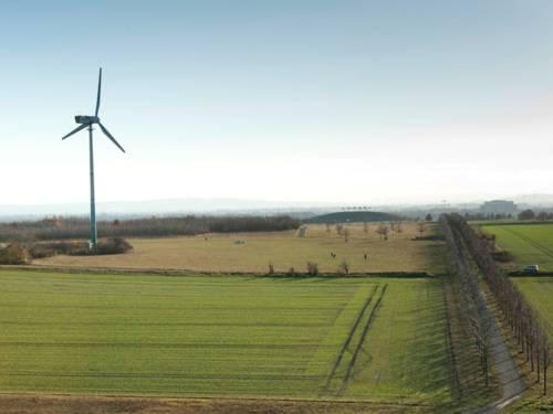 Ein Windrad steht in einer flachen Landschaft, bestehend aus grünen Feldern und Wiesen und einer Allee.