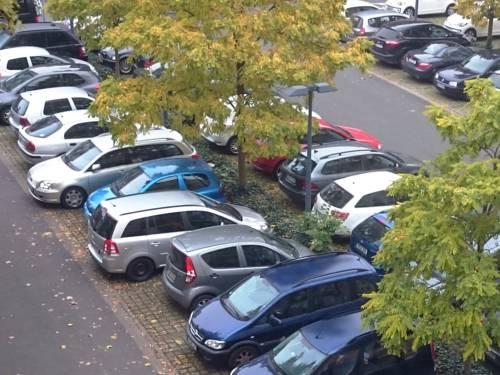 Kraftfahrzeuge stehen in Parkbuchten.