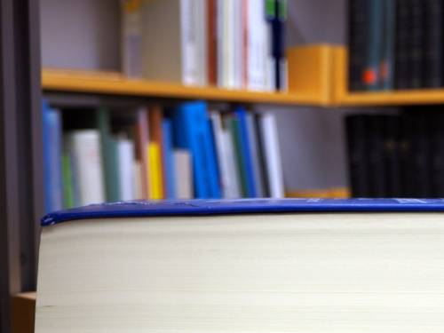 Blick auf den Rand eines zugeklappten Fachbuchs, im Hintergrund sind verschwommen weitere Bücher zu erkennen, diese stehen in Bücherregalen.