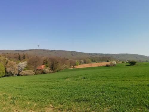Grüne und hügelige Landschaft im Frühling