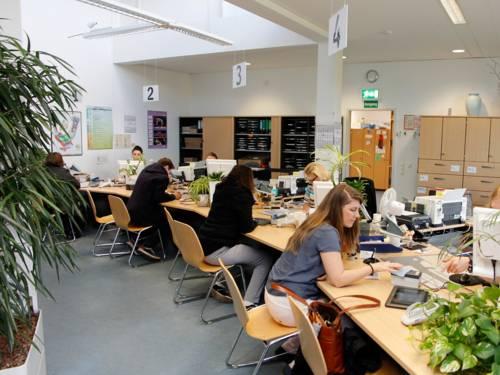 Bürgerinnen und Bürger sowie Sachbearbeiterinnen in einem großen mit Schreibtischen und Grünpflanzen versehenen Raum