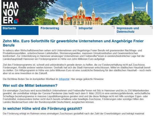"""Screenshot des Online-Antrags für das """"Förderprogramm Corona"""""""
