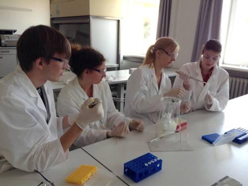 Ein Schüler und drei Schülerinnen in weißen Kitteln und mit Schutzbrillen arbeiten mit Pipetten in einer Laborumgebung