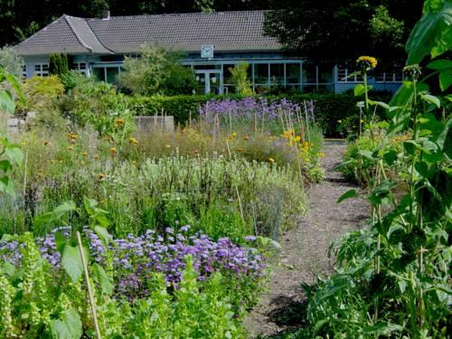 Blühende Pflanzen vor hellblau gestrichenem langgestreckten Holzbau