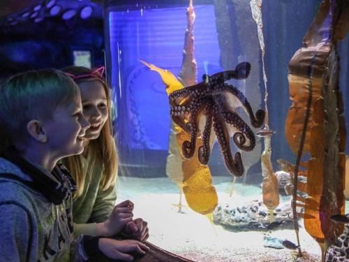 Oktopus mit Kindern