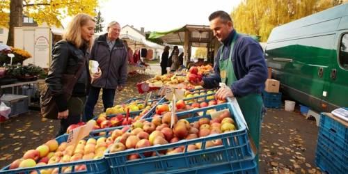 Kundin und ein Interessent vor einem Markstand mit Äpfeln; der Obstverkäufer hält vier Äpfel in einer Hand.