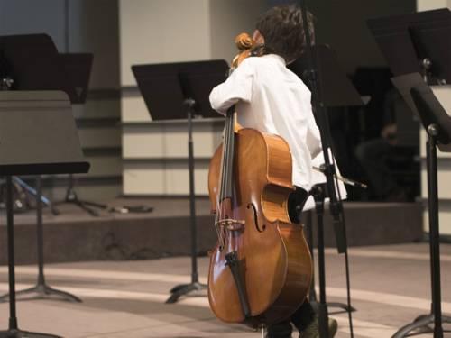 Die klassischen Orchesterinstrumente wie Geige, Bratsche, Cello oder Kontrabass zählen zu den Saiteninstrumenten.