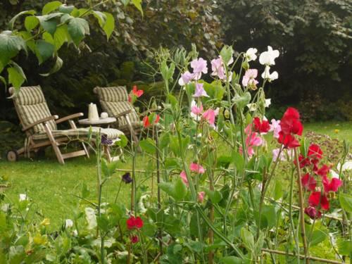 Blick in einen Garten, im Vordergrund sind verschiedene Blumen zu sehen, im Hintergrund stehen Liegestühle