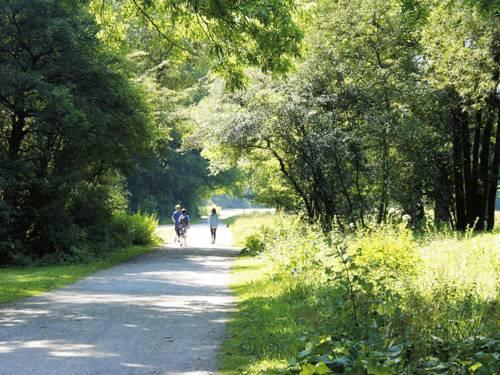 Drei junge Leute spazieren bzw. laufen duch den Hermann-Löns-Park