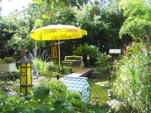 Ein Innenhof, der in eine Teich- und Gartenanlage umgewandelt wurde