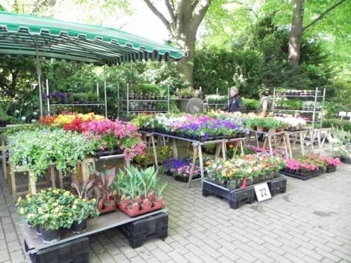 Verkaufsstand mit Pflanzen bei den Hannoverschen Pflanzentagen