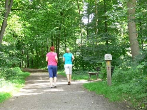 Zwei Joggerinnen im Wald