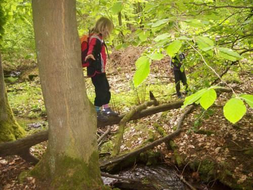 Ein Kind balanciert auf einem Baumstamm, der über einen Bach verläuft