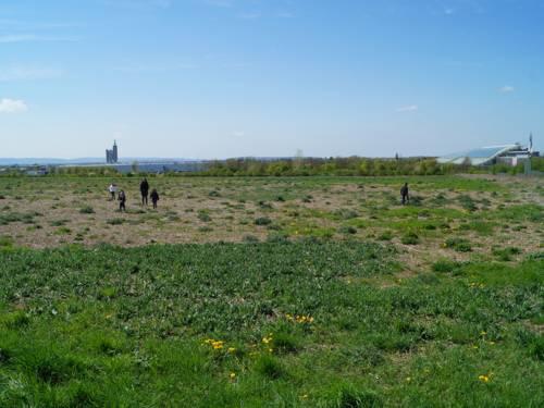 Blick auf den Bereich, in dem der vierte Bauabschnitt des Parks Kattenbrook umgesetzt wird