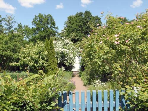 Ein blauer Gartenzaun, umgeben von Pflanzen