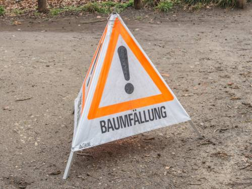 """Warnschild mit der Aufschrift """"Baumfällung"""""""