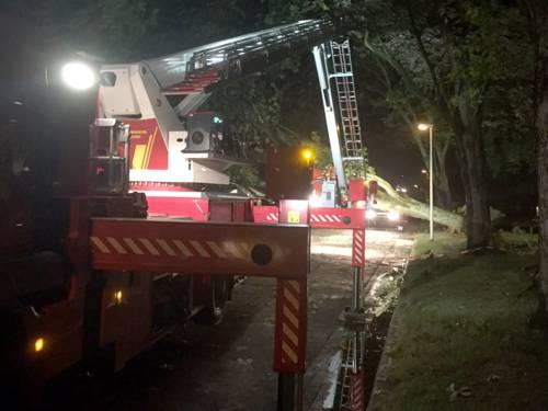 Die Teleskopmastbühne der Ortsfeuerwehr Misburg kommt bei einem umgestürzten Baum in der Heiligengeiststraße zum Einsatz.