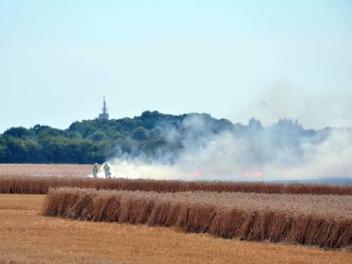Weizenfeld brennt