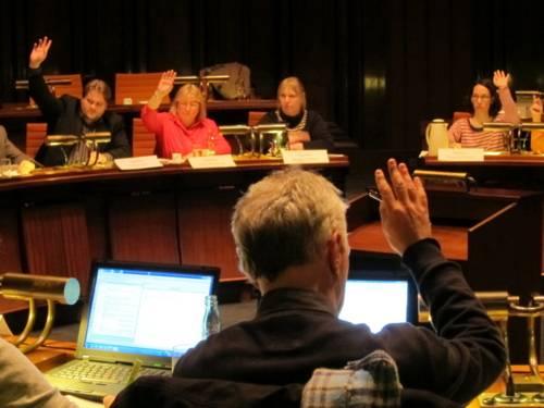 Eine Person ist von hinten abgebildet und hebt seinen Arm zur Abstimmung. Ihm gegenüber sitzen vier weitere Personen, von denen drei ebenfalls ihren Arm heben.