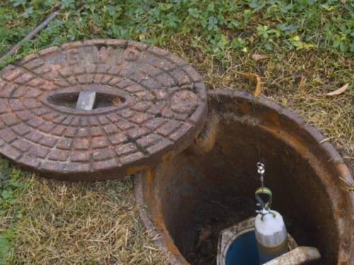 Filmclip, der die Untersuchung der Grundwasserfauna zeigt.