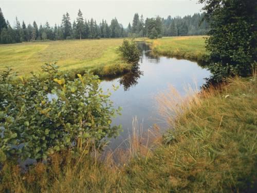 Fluss mit Herbstlandschaft
