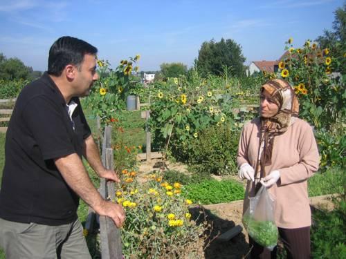 Eine Frau steht mit einem Beutel frisch geerntetem Gemüse in einem Kleingarten und unterhält sich über den Gartenzaun mit einem Mann.