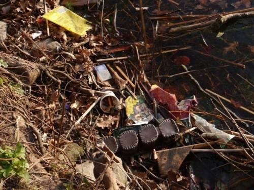 Müll am Ufer.
