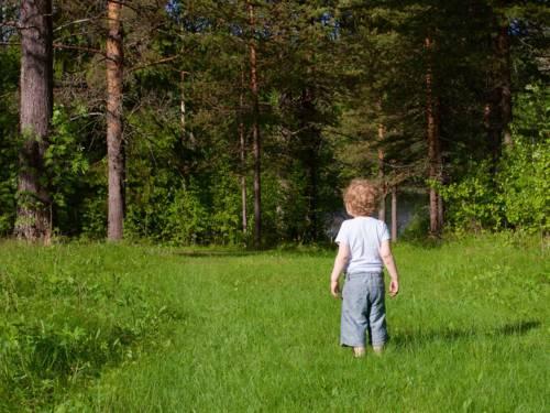 Ein kleines Kind steht auf einem Wiesenweg in einen Wald.