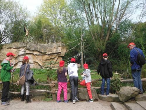 Sechs Kinder mit einer erwachsenen Begleitung beim Ausflug im Zoo