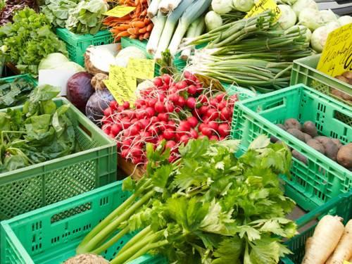 Gemüseauslage auf einem Wochenmarkt: Radieschen, Sellerie, Mangold, Lauch, Rotkohl, Salat, Kohlrabi, Zwiebeln, Kartoffeln und Pastinaken