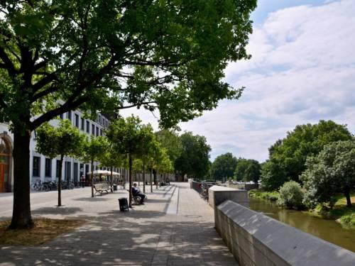 An einem erhöhten Flussufer stehen Bänke und Bäume.
