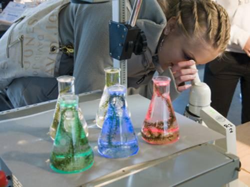 Ein Mädchen schaut sich etwas durch ein Mikroskop an.