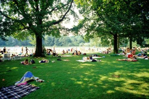 Viele Menschen liegen auf einer schattigen Wiese. Zwischen einigen Bäumen im Hintergrund lässt sich der See erahnen.