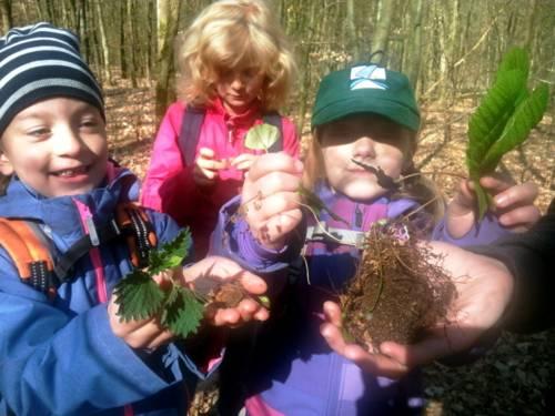 Drei Kinder halten Pflanzen oder Teile davon in ihren Händen.