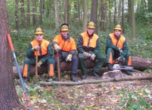Vier Auszubildenende auf Baumstamm sitzend