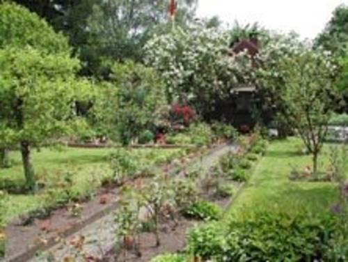 Organisation der Kleingärten