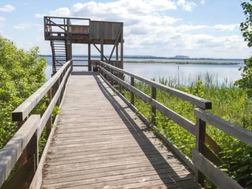 Ein Steg führt zu einem Aussichtsturm, von dem aus sich das Steinhuder Meer überblicken lässt.