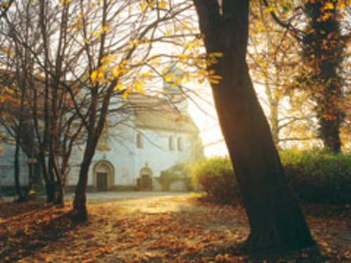 Blick vom Weg zwischen Bäumen hindurch, gegen die Sonne auf das weisse Gebäude des Klosters.  Die Bäume haben bereits das meiste Laub verloren, einige gelb-gold-braune Blätter filtern das Sonnenlicht