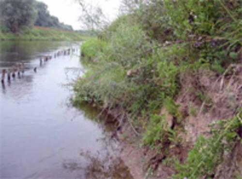 Fluß mit begrüntem Steilufer