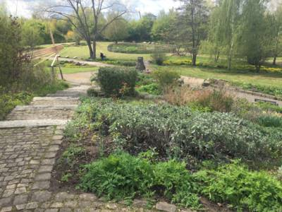 Dieses Bild zeigt die Hochbeete im Park der Sinne.