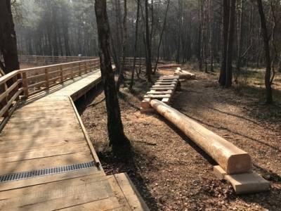 Holzsteg und dann ein behauener Balken sowie eine liegende Leiter aus Holz