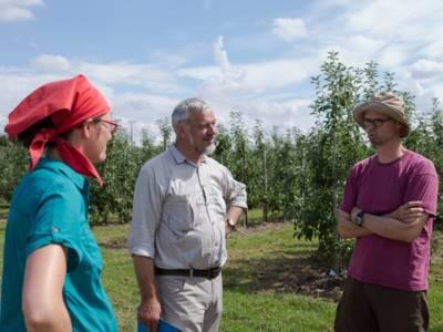 Eine Frau und zwei Männer auf einer Obstplantage.