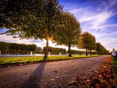 Herrenhäuser Gärten Allee Herbst