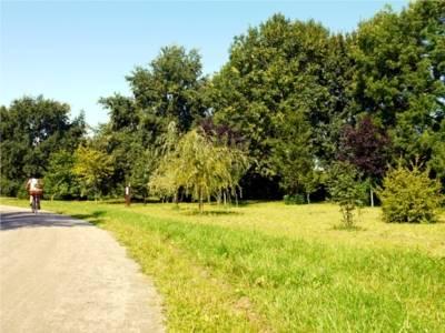 Auf dem Bild ist der Fössegrünzug zu sehen. Auf dem Weg fährt eine Radfahrerin. Neben dem Weg liegt eine Wiese und daneben stehen viele Bäume.