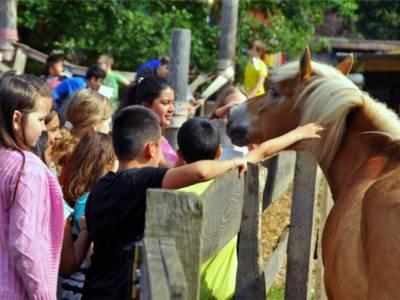 Kinder streicheln ein Pony.