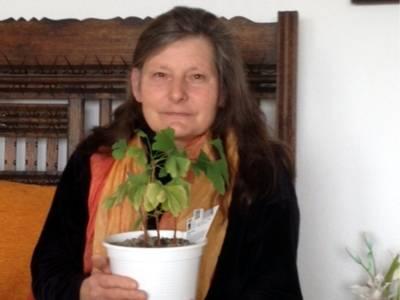 Frau Cornelia Mohrig hält ein Topf mit einer Gingko-Pflanze in der Hand.