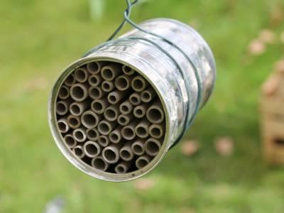 In eine Konservendose sind Papprollen eingesetzt, in denen Insekten nisten können.