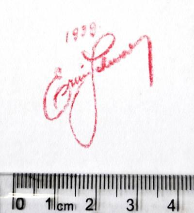 """handschriftliche Einträge """"1939 / Ervin[?] Schwarcz[?]"""" oder """"Erica[?] Schwarz[?]"""""""