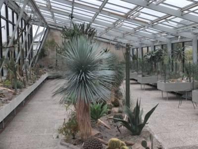 Blick in's Schauhaus
