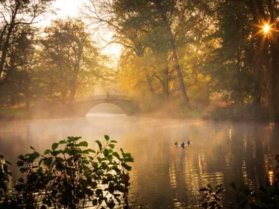 """Augustenbrücke im Georgengarten """"Morning Glory"""""""